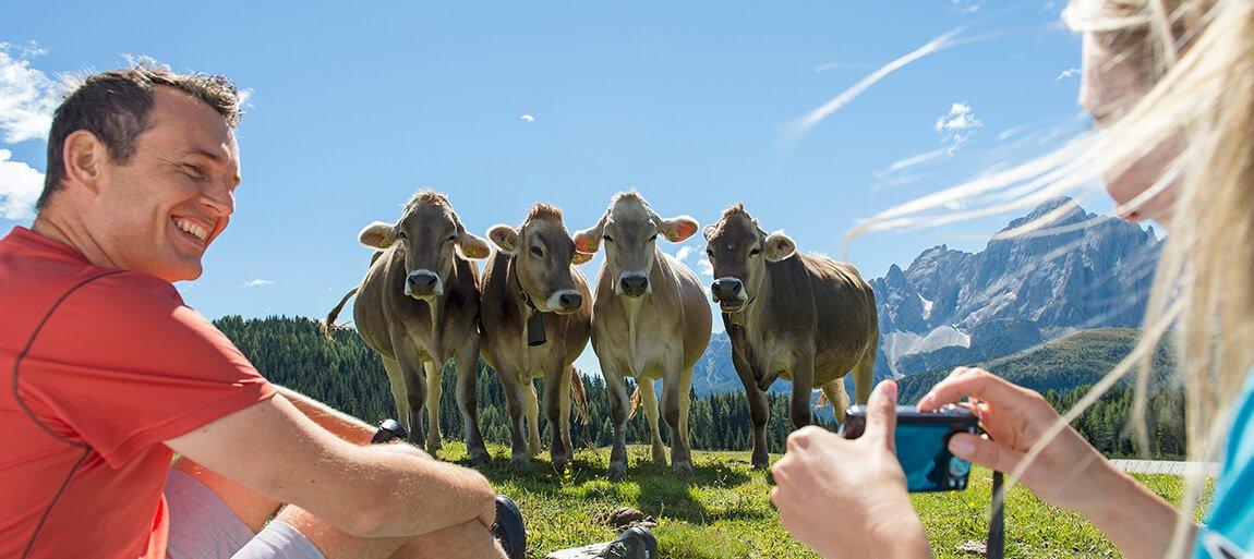 Ferien auf dem Bauernhof im Hochpustertal